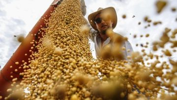 Brazilian Soybeans May Be the Fuel of the Future